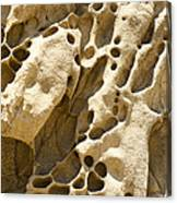 Sandstone Rock Formation Two At Big Sur  Canvas Print