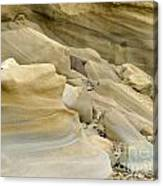 Sandstone Sediment Smoothed And Rounded By Water Canvas Print