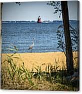 Sandy Pt Shoal Lighthouse And Blue Heron Canvas Print