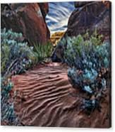 Sandy Trail Arches National Park Canvas Print