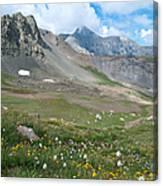 Sangre De Cristos Meadow And Mountains Canvas Print
