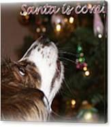 Santa - Christmas - Pet Canvas Print