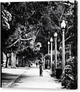 Santa Monica Jogging Canvas Print