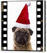 Santa Pug - Canine Christmas Canvas Print