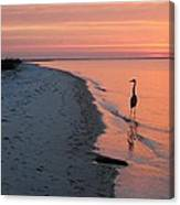 Santa Rosa Sunset Canvas Print