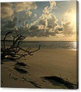 Sapelo Sunrise Canvas Print