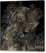 Sarafina V5 Canvas Print