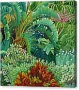 Sarasota Garden Canvas Print
