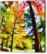 Saratoga Tree Canvas Print