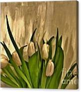 Satin Soft Tulips Canvas Print