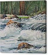 Sauble Falls Canvas Print