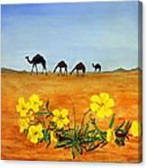 Saudi Arabian Desert Canvas Print