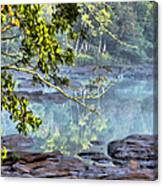 Savannah River In Spring Canvas Print