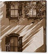 Savannah Sepia - Windows Canvas Print
