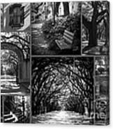 Savannah Shadows Collage Canvas Print