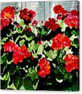 Savannah Window Box Canvas Print