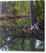 Save The Marsh Canvas Print