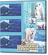 Save The Polar Bear Now Or Never Canvas Print
