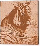 Save Tiger Canvas Print
