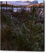 Sawtooth Mountain Canvas Print