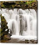 Scaleber Force Close Up Canvas Print