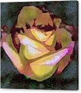 Scanned Rose Water Color Canvas Print