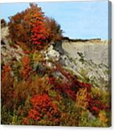 Scarborough Bluffs In Colour Canvas Print