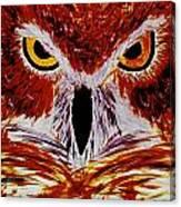 Scarlet Owl Canvas Print