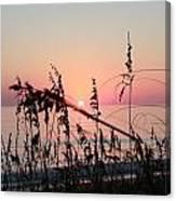 Scarlet Sunrise Canvas Print