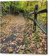 Scene In Mill Creek Park  Canvas Print