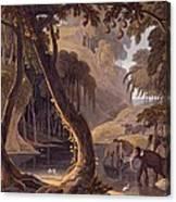 Scene In Sitsikamma - Elephants Canvas Print