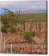 Scenic Boothill Cemetery In Tombstone Arizona Canvas Print