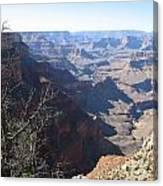 Scenic Grand Canyon Canvas Print
