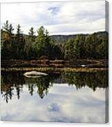 Scenic Lily Pond Canvas Print