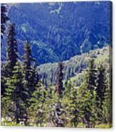 Scenic Mountain Valley Canvas Print