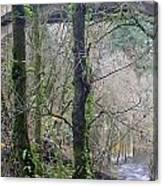 Scenic View Arch Bridge Canvas Print