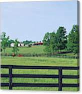 Scenic View Of Horse Farm, Woodford Canvas Print