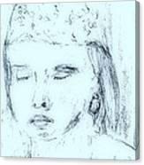 Schej Canvas Print