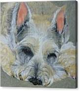 Schnauzer Pet Portrait Original Oil Painting 8x10 Inches Made To Order Canvas Print