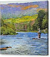 Schoharie Creek Canvas Print