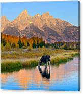 Schwabacher Morning Light  Canvas Print