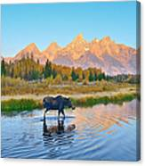 Schwabacher Morning Travels Canvas Print