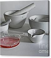 Science Class Canvas Print