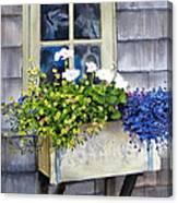 'sconset Window Box Canvas Print