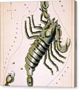 Scorpio Constellation  1825 Canvas Print