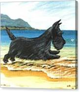 Scottie At Play Canvas Print