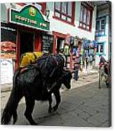 Scottish Pub In Lukla Canvas Print