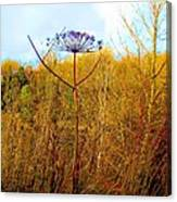 Scottish Thistle On The Firth Canvas Print