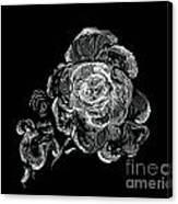 Scratched Rose Canvas Print