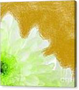 Scream And Shout Green White Brown Canvas Print